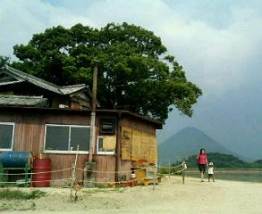 松井製麺所と讃岐ふじ